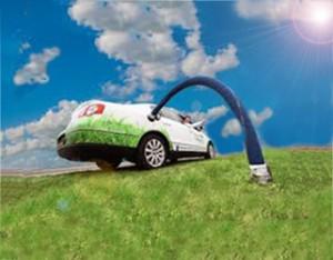 ecowagen